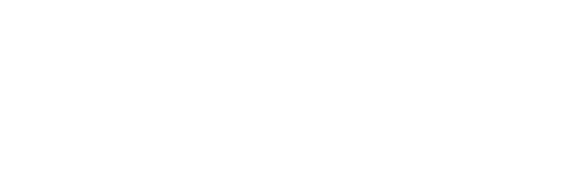 Lausitz Timing Logo